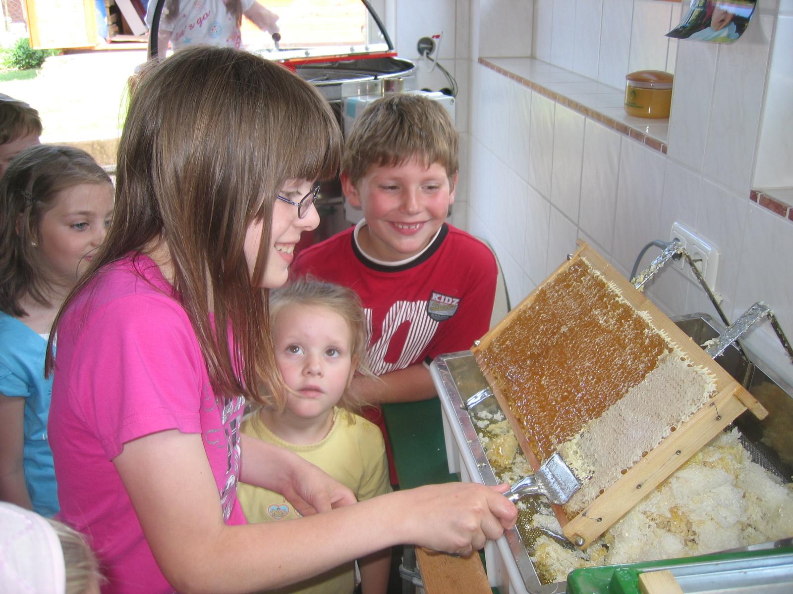 Grundschüler aus Irsch besuchen unsere Imkerei