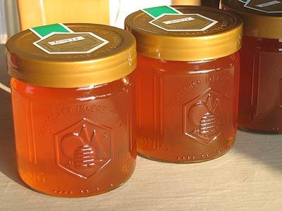 Honigschulungen 2016 im Saarland und in RLP