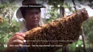Die Honigsammler von Yunann